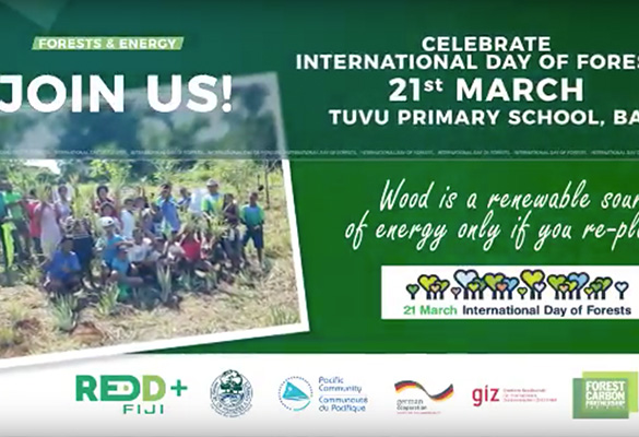 International Day of Forests 2017